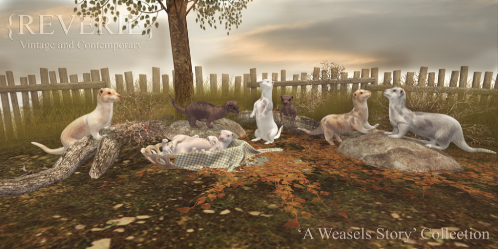 {Reverie} 'A Weasels Story' Ad