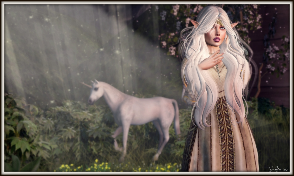 The Last Unicorn Dreams