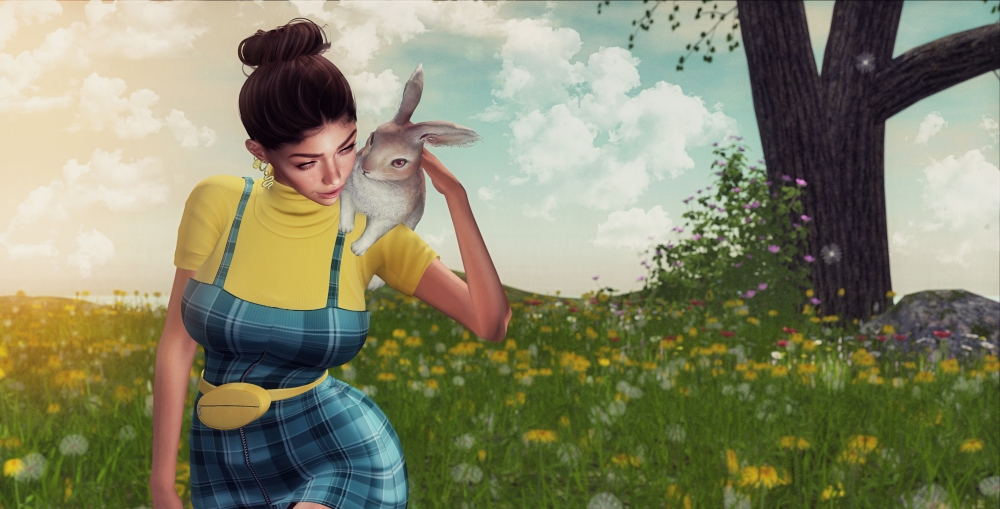 Dandelions and Bunny Fluff